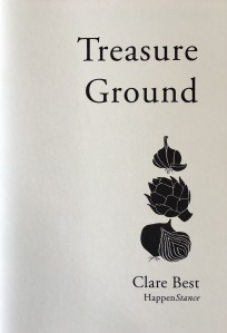 Treasure Ground by Clare Best - cover
